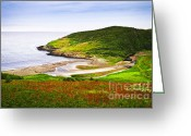 Coastal Landscape Greeting Cards - Atlantic coast in Newfoundland Greeting Card by Elena Elisseeva