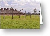 Nazi Greeting Cards - Auschwitz Birkenau concentration camp. Greeting Card by Fernando Barozza