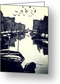Seagulls Greeting Cards - Burano Greeting Card by Joana Kruse
