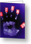 Fingertips Greeting Cards - Identity Fraud Greeting Card by Kevin Curtis