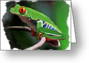 Red Eyed Leaf Frog Greeting Cards - Red-eyed Leaf Frog Greeting Card by Larry Linton