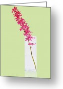 Pink Flower Branch Greeting Cards - Red Orchid Bunch Greeting Card by Atiketta Sangasaeng