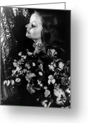 Holding Flower Greeting Cards - Tallulah Bankhead Greeting Card by Granger