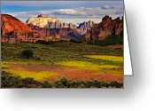 Desert Southwest Greeting Cards - Zion National Park Utah Greeting Card by Utah Images