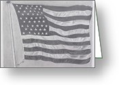 Usa Flag Pastels Greeting Cards - 50 Stars 13 Stripes Greeting Card by Wil Golden