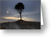 Dirt Road Greeting Cards - Tuscany Greeting Card by Joana Kruse