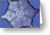 Featured Greeting Cards - Snowflake Greeting Card by Science Source