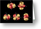 Quantum Mechanics Greeting Cards - 5d Electron Orbitals Greeting Card by Dr Mark J. Winter