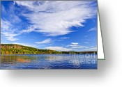 Vivid Greeting Cards - Fall forest and lake Greeting Card by Elena Elisseeva