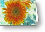 Daisies Photos Greeting Cards - Fleur Greeting Card by Kristin Kreet