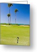 Tropical Golf Course Greeting Cards - Florida Gold Coast Resort Golf Course Greeting Card by ELITE IMAGE photography By Chad McDermott