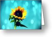Northwest Flowers Greeting Cards - Sunflower Greeting Card by Cathie Tyler