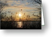Reflection Pyrography Greeting Cards - Sunset Chesapeake Bay Greeting Card by Valia Bradshaw