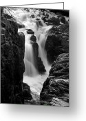 Woodland Plant Greeting Cards - Waterfall Greeting Card by Svetlana Sewell