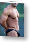 Starrs Greeting Cards - Male MuscleArt  Greeting Card by Jake Hartz