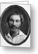 Daguerreotype Greeting Cards - Walt Whitman (1819-1892) Greeting Card by Granger