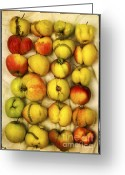 Process Greeting Cards - Apples Greeting Card by Bernard Jaubert