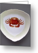 One Of A Kind Ceramics Greeting Cards - 866 3 part of Crab Set 1 Greeting Card by Wilma Manhardt