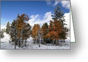 Landscape Framed Prints Greeting Cards - Rocky Mountain Fall Greeting Card by Mark Smith