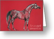 Horse Portrait Pastels Greeting Cards - Arabian Horse Drawing Greeting Card by Angel  Tarantella