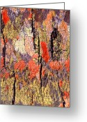 Vibrant Greeting Cards - Tree Bark Greeting Card by John Foxx
