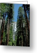 Yosemite Creek Greeting Cards - Yosemite Falls Greeting Card by LeeAnn McLaneGoetz McLaneGoetzStudioLLCcom