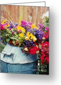 Original Equine Portrait Photo Greeting Cards - A Barrel of Color Greeting Card by David Ackerson