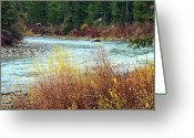 Gallatin River Greeting Cards - A Bend In The River Greeting Card by Lynn Bawden