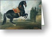 Georg Greeting Cards - A black horse performing the Courbette Greeting Card by Johann Georg Hamilton