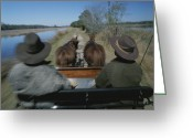 Western Clothing Greeting Cards - A Carriage Pulled By Two Horses Follows Greeting Card by Michael Melford