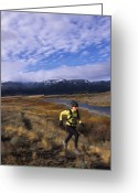 Jogging Greeting Cards - A Caucasian Women Trail Running Greeting Card by Bobby Model