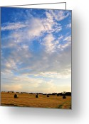 Evening Scenes Photo Greeting Cards - A Cause For Sunshine Greeting Card by Jan Amiss Photography