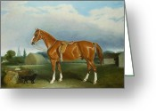 Hunting. Hunting Dog Greeting Cards - A Chestnut Hunter and a Spaniel by Farm Buildings  Greeting Card by John E Ferneley
