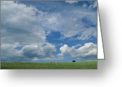 Grasslands Greeting Cards - A Cloud-filled Sky Over Pronghorns Greeting Card by Annie Griffiths
