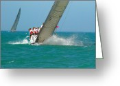 Sailing Fast Greeting Cards - A Crew Racing In A Regatta In Key West Greeting Card by Hibberd, Shannon