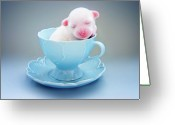 Crest Greeting Cards - A Cute Teacup Puppy Greeting Card by Amy Lane Photography