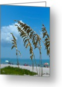 Nice Day Greeting Cards - A Day at The Beach - Cocoa Beach FL Greeting Card by Frank Mari