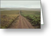 Grasslands Greeting Cards - A Dirt Road Leading To The Horizon Greeting Card by Bill Curtsinger