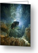 West Indies Greeting Cards - A Diver Ascends A Deep Shaft In Dans Greeting Card by Wes C. Skiles