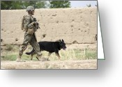 Working Dogs Greeting Cards - A Dog Handler Of The U.s. Marine Corps Greeting Card by Stocktrek Images