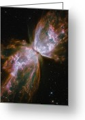 Telescope Greeting Cards - A Dying Star In The Center Greeting Card by Nasa/Esa