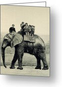 Elephant Ride Greeting Cards - A Farewell Ride on Jumbo from The Illustrated London News Greeting Card by English School