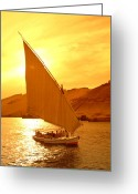 Nile River Greeting Cards - A Felucca Cruises On The Nile River Greeting Card by Richard Nowitz
