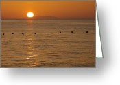Water Scenes Greeting Cards - A Flock Of Brown Pelicans Flying Low Greeting Card by Ralph Lee Hopkins