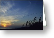 Atlantic Beaches Greeting Cards - A Flock Of Pelicans Soar Above A Beach Greeting Card by David Evans