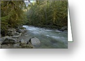 Minard Greeting Cards - A flow Greeting Card by Vern Minard