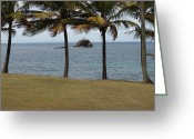 St. Lucia Photographs Greeting Cards - A Good Resting Place Greeting Card by Robert Margetts