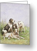 Working Dogs Greeting Cards - A Group of French Hounds Greeting Card by Charles Oliver de Penne