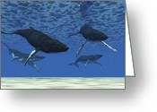 Sea Life Digital Art Greeting Cards - A Group Of Humpback Whales Swim Greeting Card by Corey Ford