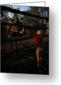 Wood Fences Greeting Cards - A Half-naked Toddler Feeds A Cow Grass Greeting Card by J. Bruce Baumann